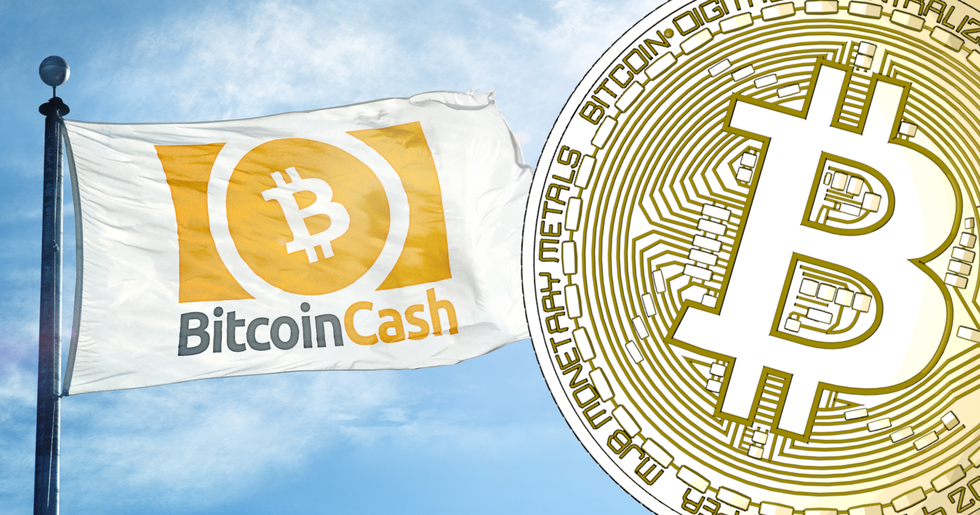 Bitcoin cash continues to rally – is now the world's fourth biggest cryptocurrency.