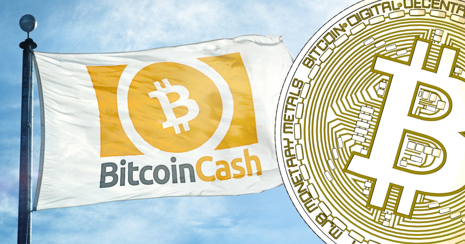 Daily crypto: Bitcoin cash rallies following news about mining giant IPO.