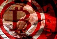 Svenske Kim, 79, förlorade miljonbelopp till bitcoinbedragare: