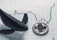 Analys visar: Bitcoins senaste krasch under 10 000 dollar var inte manipulation