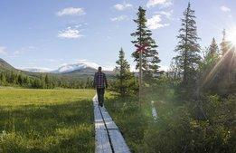Miljonstöd till besöksnäringen i Västerbotten