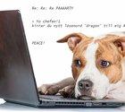 Tio mejl-fails som pajar din jobbvardag