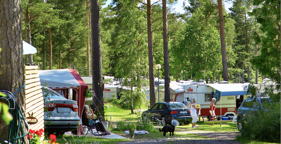 Nytt rekordår för campingbranschen