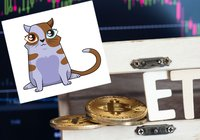 Daily crypto: CEO believes in bitcoin ETF within one year and cryptokitty sold for $172,000