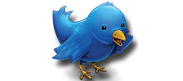 Så hittar du drömjobbet med Twitter