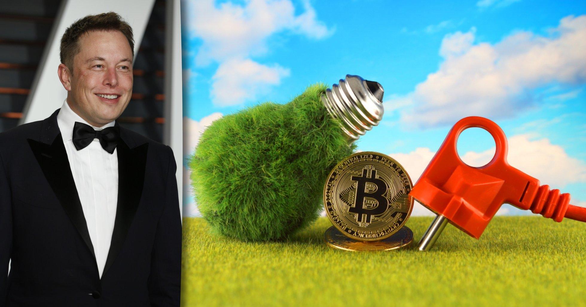 Amerikanska bitcoinminers startar klimatråd – efter möte med Elon Musk