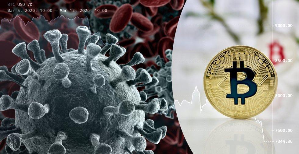 Kryptoexpert om bitcoinprisets störtdyk: Kan vara läge att köpa
