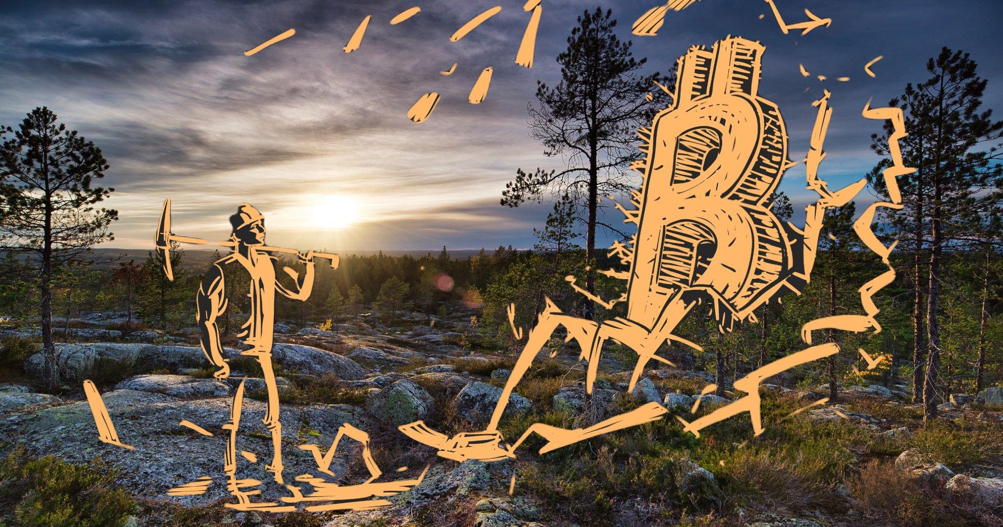 Umeåföretag dolde kryptoverksamhet – tvingas betala 47 miljoner i skattesmäll.