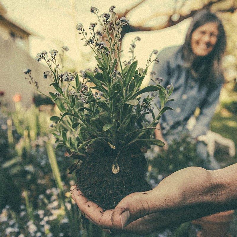 6 böcker att lyssna på när du påtar i trädgården