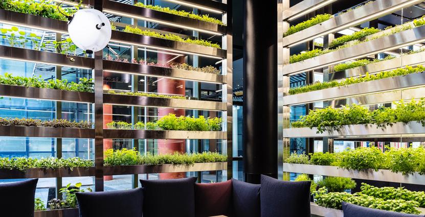 """Good Bank i Berlin kallar sig världens första """"vertical- farm-to-table-restaurant"""".<br />  FOTO. Annika Goldhammer"""