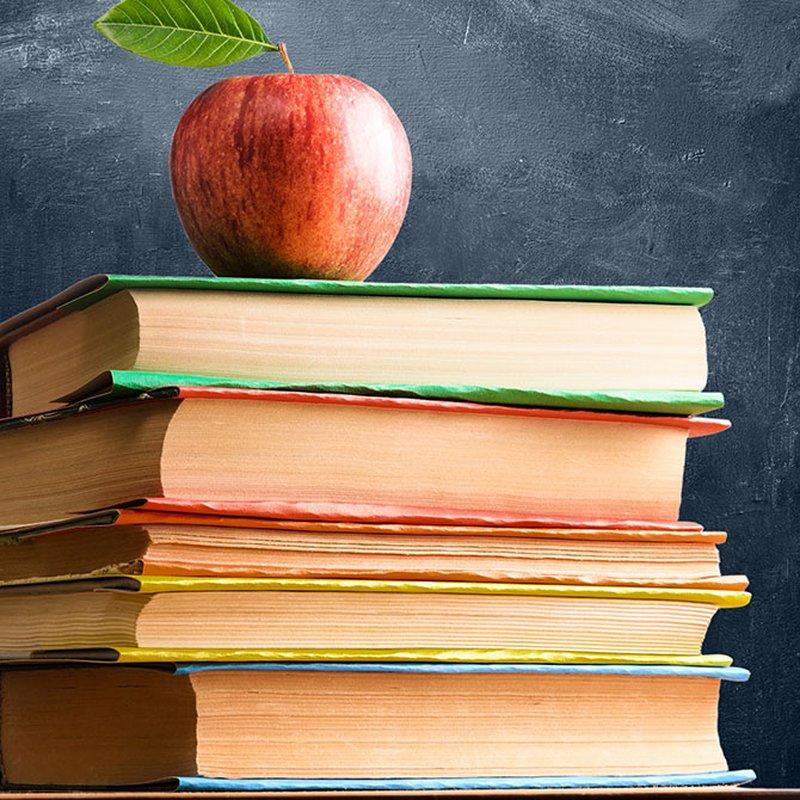 8 klassiker du tvingades läsa i skolan