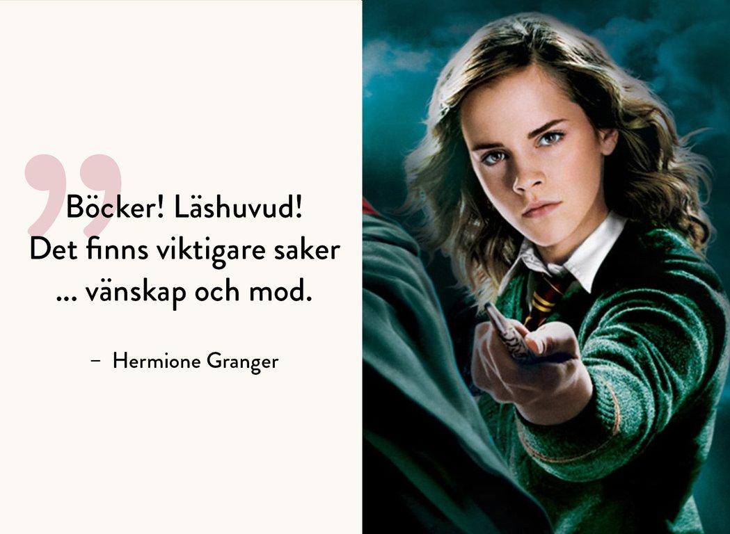 Foto: Från DVD-omslag till Harry Potter och Fenixordern