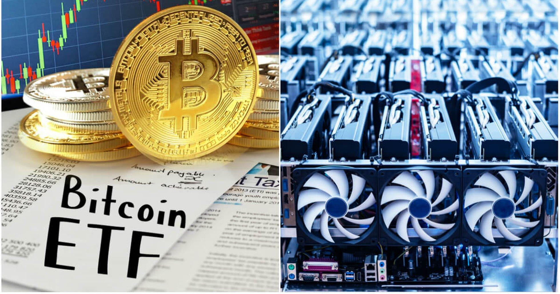 Kryptodygnet: Ansökningar om bitcoin-ETF:er avslås och största valutorna sjunker.