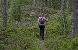 Samarbete ska lyfta Sverige som vandringsdestination