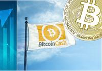 Kryptodygnet: Bitcoin cash rusar och bitcoin över 4 000 dollar igen