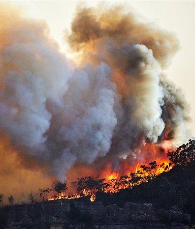 Klimatfiktion – 8 böcker som kretsar kring vår tids stora ödesfråga