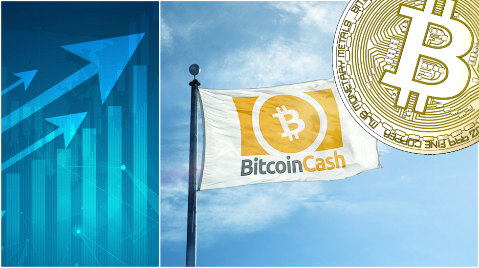 Daily crypto: Bitcoin cash rallies and bitcoin is over $4,000 again.