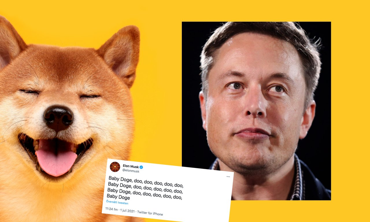Elon Musk twittrar om nya kryptovalutan baby doge – priset rusar 130 procent.