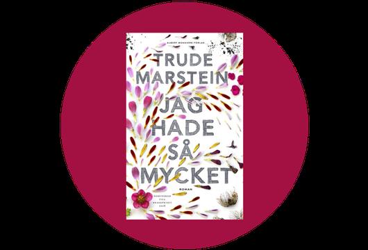 Jag hade så mycket av Trude Marstein