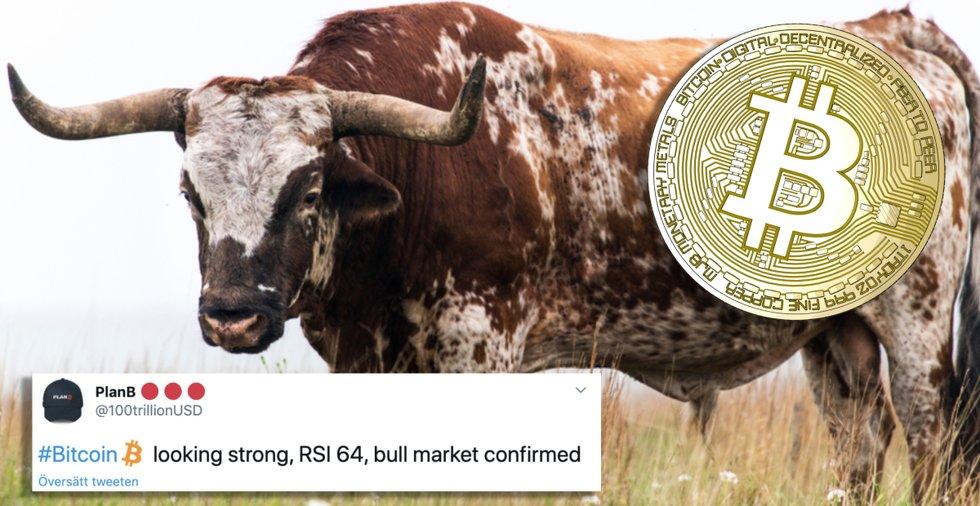 Kontroversiell kryptoanalytiker: Nu är en tjurmarknad för bitcoin garanterad