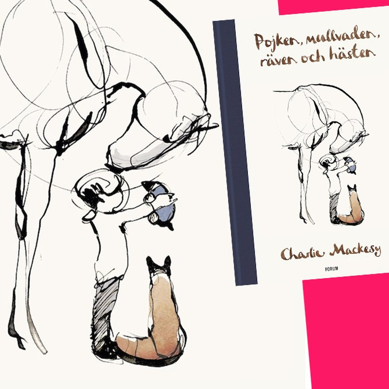 Fenomenboken som blivit nya Nalle Puh – nu kommer succén på svenska