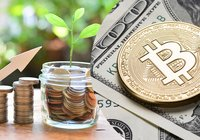 Crypto fund up almost 300 percent – outperforms Wall Street by far
