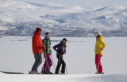Här är föregångarna i skidbranschen 2017