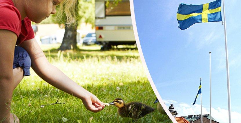 Digitaliseringen är en av de stora utmaningar som Svensk Turism står inför. Foto: Svensk Turism, Colourbox