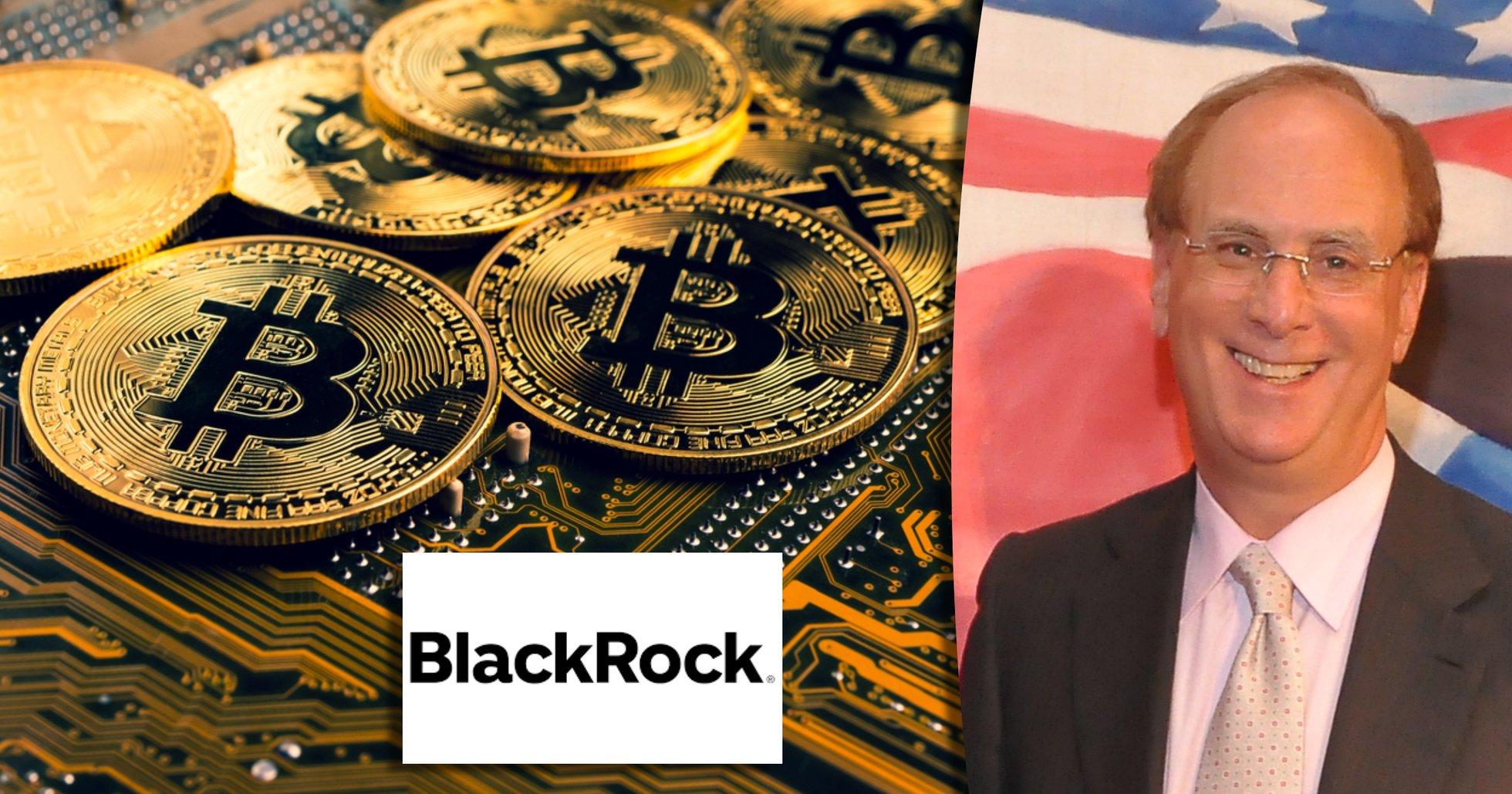 Black Rocks vd: Kryptovalutor kan bli stort – men ingen ersättning för fiatvalutor