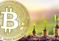 Vill du investera i bitcoin och andra kryptovalutor? Här är 5 saker du bör veta innan