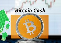 Daily crypto: Bitcoin cash continues to rally on otherwise stagnant markets