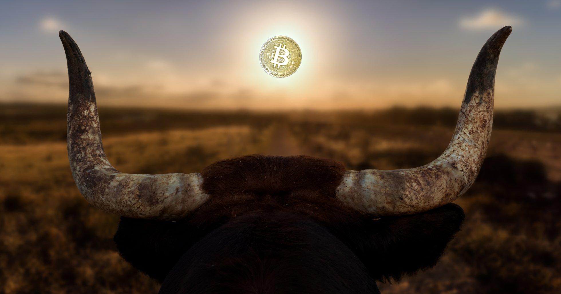 4 möjliga orsaker till att bitcoinpriset krossade 10 000-dollarsgränsen.