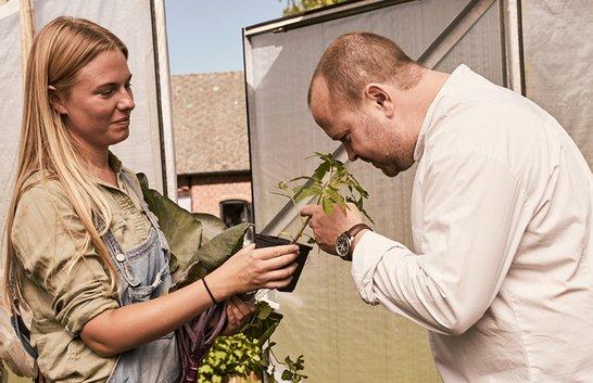 Trädgårdsmästaren – restaurangernas nya nyckelroll