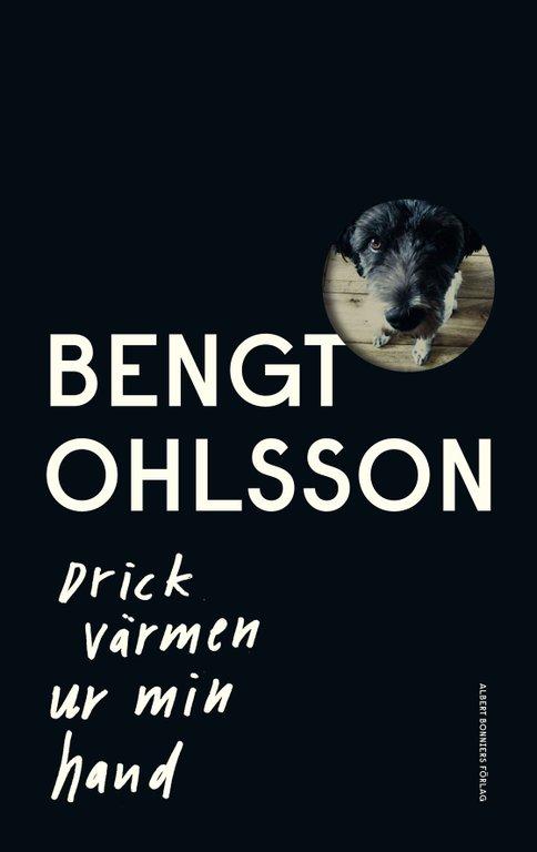 Hundkärlek! 6 böcker om människans bästa vän