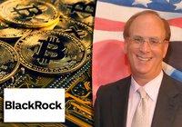 Black Rocks vd: Kryptovalutor kan bli stort – men är ingen ersättning för fiatvalutor