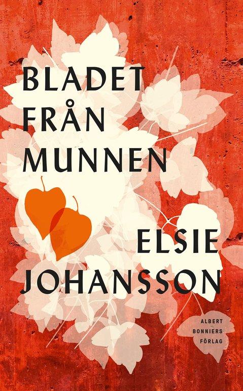 Så mycket levt liv – 6 romaner med en äldre kvinna som huvudperson
