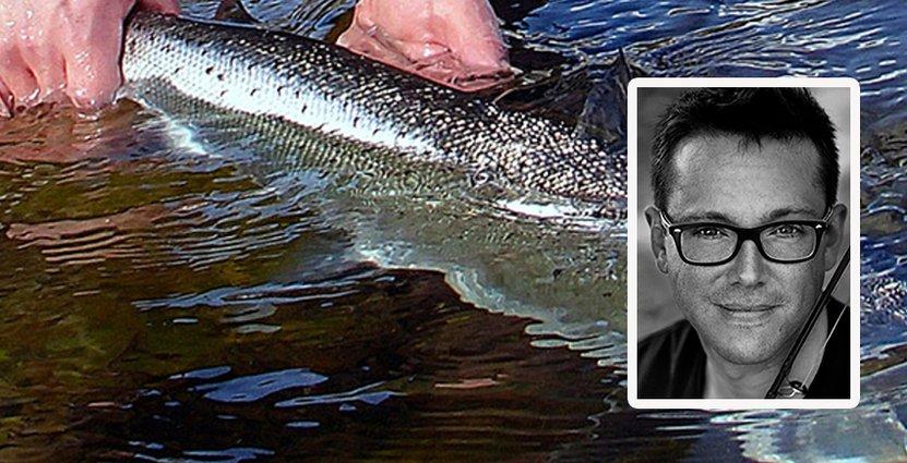 Svensk fisketurism omsätter mellan 7,5 och 15 miljarder kronor, men kan växa betydligt, menar Per Jobs, ordförande i Sveriges Fisketurimföretagare. Foto: Sveriges Fisketurismföretagare