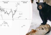 Analytiker förutspådde bitcoins coronakrasch – nu tror han på en ny björnmarknad