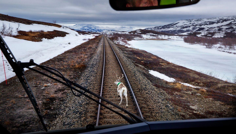 Toget som krysser polarsirkelen