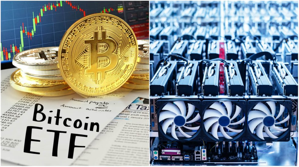 Daily crypto: Applications for bitcoin ETFs are rejected and the biggest currencies are dipping.