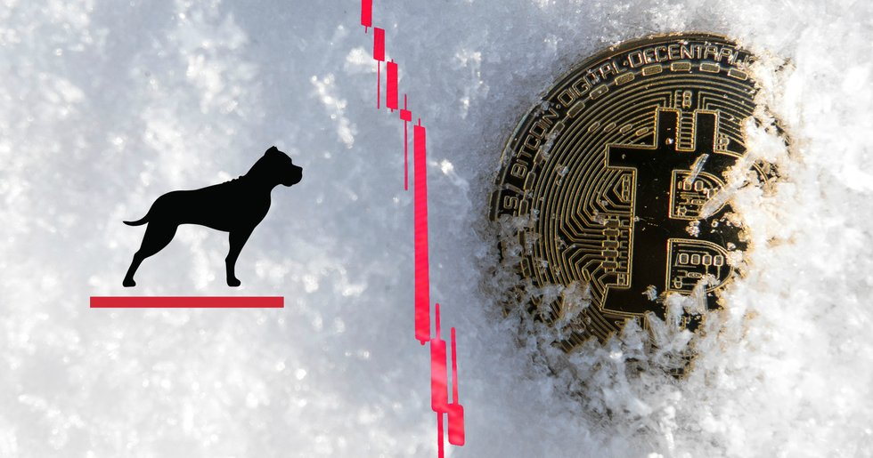 GP Bullhound predicts a 90 percent correction downwards of the crypto market.