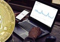 Bitcoinpriset når lägsta nivån på ett halvår – då rusar antalet googlesökningar