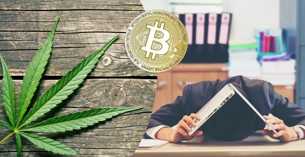 Knarklangare tappade bort nycklarna till bitcoinförmögenhet värd 55 miljoner kronor
