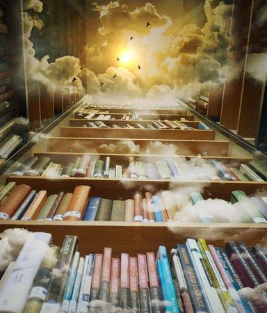 6 sagolika bibliotek att vila ögonen på