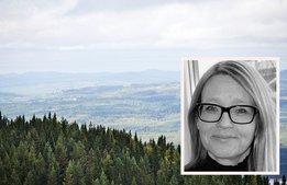 """Nya turistchefen: """"Värmland är ett Sverige i miniatyr"""""""