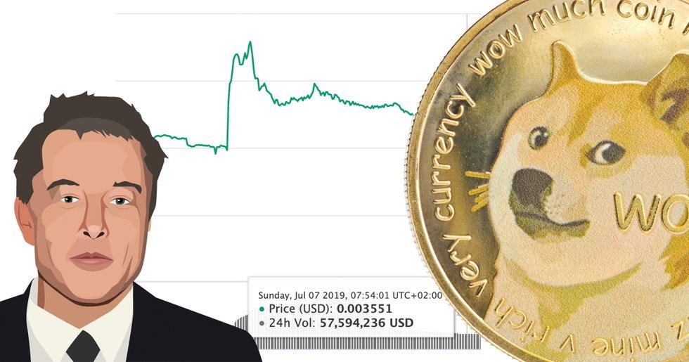 Priset på Elon Musks favoritkryptovaluta dogecoin ökade över 30 procent
