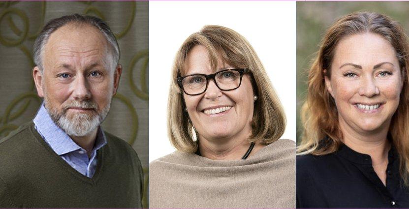 Jonas Siljhammar, Karin Johansson och Susanne Andersson Pripp. Visita, Björn Mattisson, Peter Jönsson