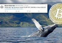 """Mystisk """"val"""" flyttade 87 miljarder i bitcoin – transaktionen kostade 4 kronor"""
