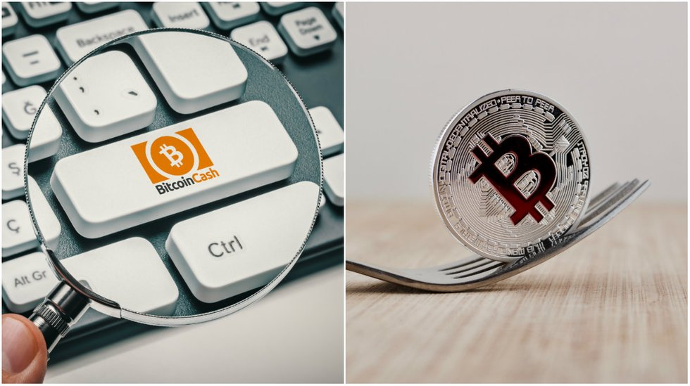 Here is all you need to know about bitcoin cash's next fork.