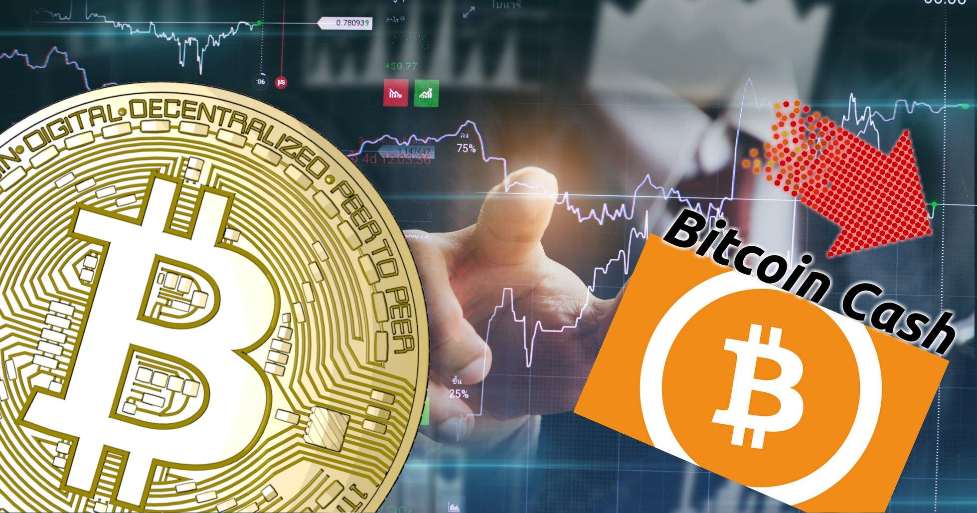 Kryptodygnet: Marknaderna går ner – bitcoin cash tappar mest av de största valutorna.
